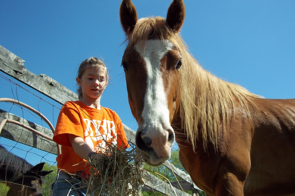Children and horses heal together at Ready Yourselves Youth Ranch