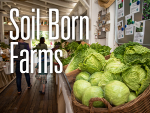 Soil Born Farms Cultivating Community