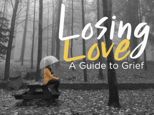 Losing Love A Guide to Grief