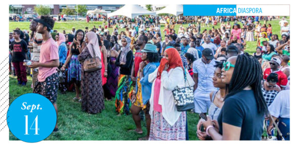 crowd shot of African Cultural Festival