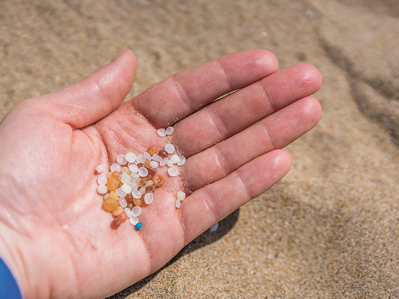 Microplastics in the environment