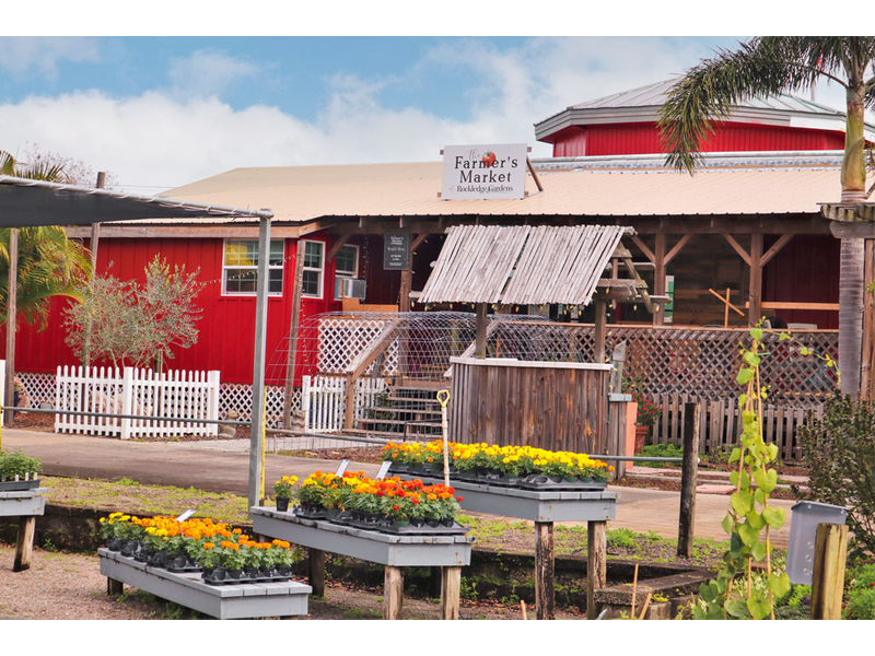 The Farmer's Market at Rockledge Gardens provides the perfect atmosphere for Farm Fresh Produce.