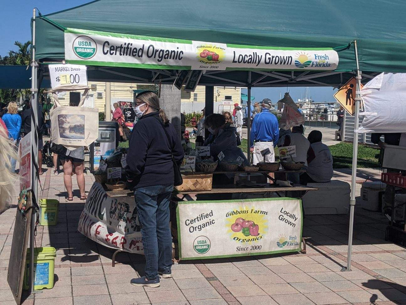 Certified Organic and Locally Grown Produce at the Ft Pierce Farmers Market