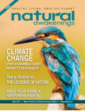 April 2021 Cover of Natural Awakenings Magazine with a blue colorful bird