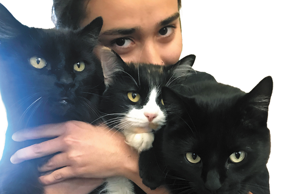 Picture of pet owner holding three cats in arms