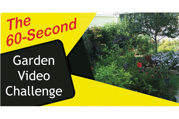 The 60-second Garden Video Challenge graphic with a garden in the background