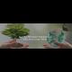 Natural Awakenings Partners with KnoWEwell