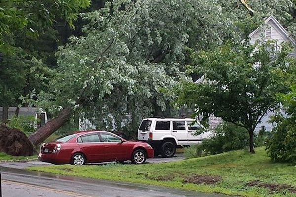 Photo submitted by Lori Martel: This huge tree was uprooted on W...
