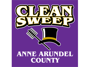 Clean sweep logo purple